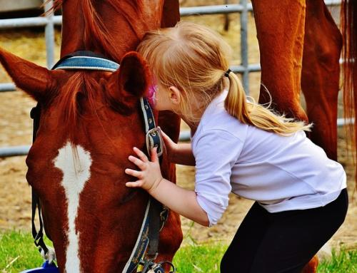 Horses Who Heal: How Equine Therapy is Helping Traumatised Children
