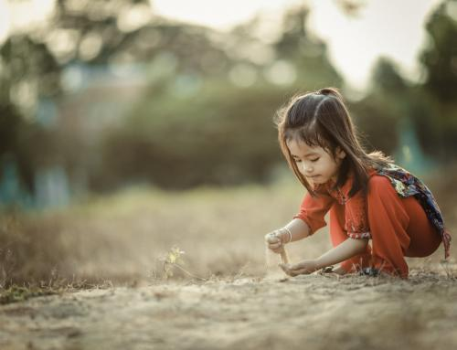Let them play! Kids need freedom from play restrictions to develop